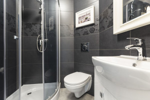 Black tiles on the wall in contemporary toilet